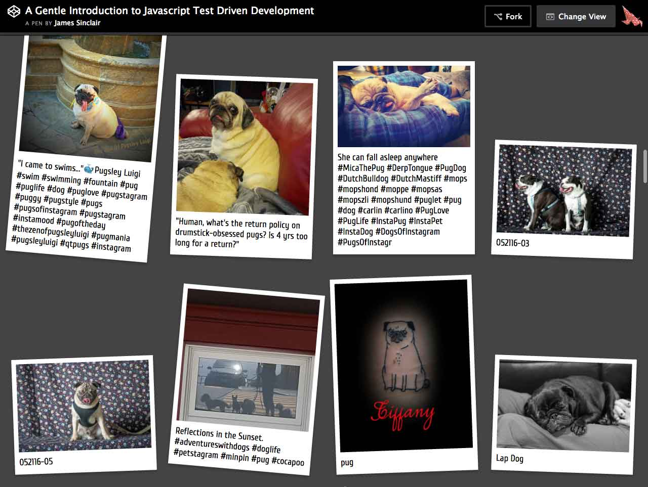 Screenshot of a web application hosted on codepen.io, showing pictures of pugs, styled to look like polaroid photographs.